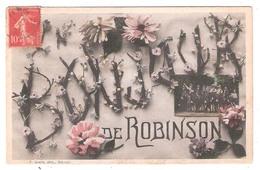 Le Plessis-Robinson (92 - Hauts De Seine) Bonjour De Robinson - Le Plessis Robinson