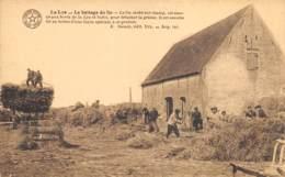 La Lys - Le Battage Du Lin - Kortrijk