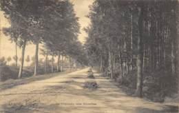 Grande Espinette - La Chaussée Vers Bruxelles - Rhode-St-Genèse - St-Genesius-Rode