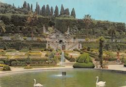 Cartolina Collodi Villa Garzoni Prospetto - Pistoia