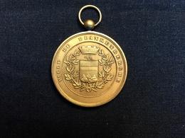 Belle Médaille Militaire Congo Force Publique Blankenberge Blankenberghe 1900 Sergent De Bruyne - Belgio