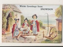 CARTE A SYSTEME MULTI VUES PAYS DE GALLES WELSH GREETING FROM SNOWDON CPA BON ETAT - Pays De Galles