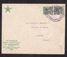Netherlands: Cover To Belgium, 1937, 2 Stamps, Special Cancel Esperanto Domo Arnhem (discolouring) - Periode 1891-1948 (Wilhelmina)