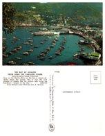 The Bay At Avalon From Near The Carillon Tower, Santa Catalina Island, California - Andere