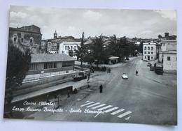 CANINO  -LARGO LUCIANO BONAPARTE-SCUOLE ELEMENTARI  - VIAGGIATA FG - Viterbo
