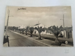 CPA MAROC - BERKANE - 24 - Le Boulevard - Marokko