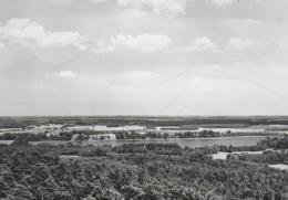 AK 0455  Heidesee - Partie Am Wolziger See / Ostalgie , DDR Um 1968 - Dahme