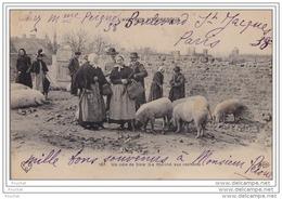 12) L´AVEYRON PITTORESQUE - Un Coin De Foire (Le Marché Aux Cochons) - Non Classés