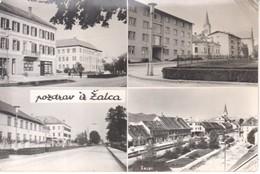 5652--AK--  ZALEC - Slovenia