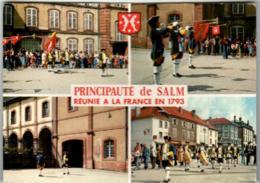 4KSK 1304 SENONES - PRINCIPAUTE DE SALM REUNIE A LA FRANCE EN 1793  (DIMENSIONS 10 X 15 CM) - Senones