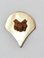 Pin's Doré Aigle En Relief - 2 Attaches - R49 - Badges