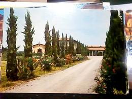 PONTASSERCHIO ( PAESE DI PISA ) MONASTERO BENEDETTINE S1975  HN6953 - Pisa
