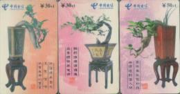 China Telecom Chip Cards, Bonsai, Fujian Province,  (3pcs) - China
