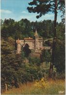 Haute  Loire : Env.  Du  Puy , Château  De La  Rochelambert - Frankrijk