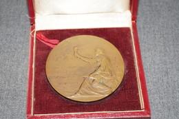 Médaille En Bronze,Université De Louvain 1834-1909,75 Iem.anniversaire,signé F.Vermeylen, Diamètre 60 Mm. - Professionnels / De Société