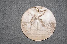 Médaille En Bronze,Alberto Mercier,signé Alf. Mauquoy,diamètre 60 Mm. - Professionnels / De Société