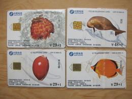 China Telecom Chip Phonecard,CNT-IC-69 Marine Life,shell,fish And Manatee Etcs, Set Of 4, Used, See Description - China