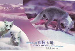 Hong Kong, 2013, Postal Stationery, Post Card, Arctic Fox, MNH** - Stamps