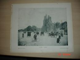 Lamina-Paris-1900--1 Au Bois-La Cascade----Les Statues Du Jardin Du Luxembourg - Ancianas (antes De 1900)
