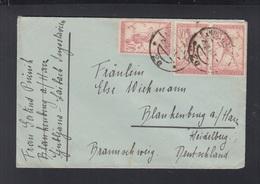 Yugoslavien Slowenien Slovenia Brief 1920 Ljubljana Nach Deutschland - Slowenien