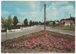 85 SOULLANS - 4 - Edts Artaud - Avenue La Roquejacquelein. - Soullans
