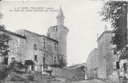 Pélussin - La Tour Du Vieux Château De Virieux - Pelussin