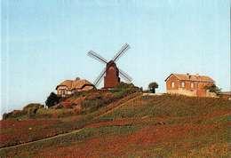 Calendrier Petit Format  1996  -     MOULIN DE VERZENAY - Calendriers