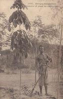 Afrique Occidentale : Un Chasseur , Plant De Caoutchouc   ///  REF. Avril 20 /// N° 11.043 - Cartes Postales