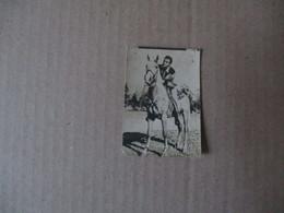 FERNANDO LAMA 35 BELGIAN CHEWING GUM Ltd. SA. BIKORFSTRAAT 92 ANTWERPEN RUE DE LA RUCHE 92 ANVERS M.G.M - Vieux Papiers