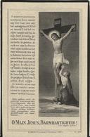 DP. STEPHANUS DEBRUYNE ° SLYPE 1843- + 1925 - Godsdienst & Esoterisme