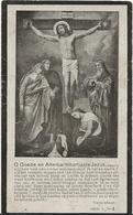 DP. JOANNES MACHTELINCKX ° STE MARIA AUDENHOVE 1863- + 1925 - Godsdienst & Esoterisme
