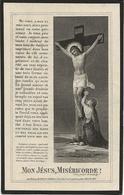 DP. JULIE BRUNEAU ° MOLEMBAIX 1860- + VELAINES 1925 - Godsdienst & Esoterisme