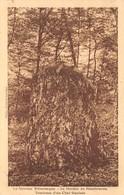 58 - Dommartin - Le Menhir De Montbracon - Tombeau Du Chef Gaulois - Autres Communes