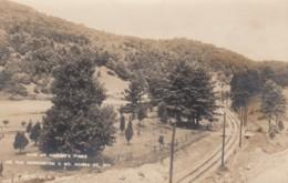 Vermont, Bennington & No. Adams St. Railway Line, Barber Pines, C1900s/10s Vintage Real Photo Postcard - Andere