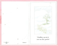 Bidprentje - Celestine APPELMANS Wed. Jan LAENENS - Malderen 1908 - Geel 1990 - Godsdienst & Esoterisme