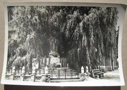 Comines : Le Monument Aux Morts - Comines-Warneton - Komen-Waasten