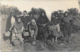 Evora NA1: Apanhadeiras De Azeitona ( Photo-carte ) - Evora