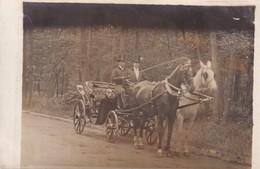 Voiture Hippomobile Attelage Carte Postale Ancienne Photographique Calèche Carrosse - Autres