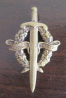 Insigne Militaire Honneur Et Patrie En Laiton Ou Bronze Embouti - Drago Paris - Longueur 45 Mm - Achat Immédiat - Armée De Terre