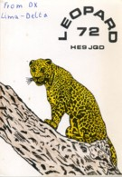 QSL RADIO NEUCHÂTEL LEOPARD 72  HE9JQD  1977 - Radio Amatoriale