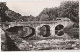 POINTIS-INARD (31) - CPSM - Le Pont Sur Le GER, Pêcheurs à La Ligne - France