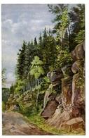 Vogesen, Weg Zwischen Thiaville Und L' Effoureux, Künstler Postkarte Nach B. Hauswald 1915 - Autres Communes
