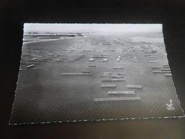 HERAULT - MEZE - N°9 - En Avion Au Dessus De - Parc à Huitres - Mèze