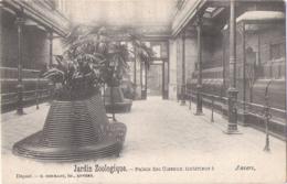 Antwerpen - Anvers: Dierentuin - Zoo - Jardin Zoologique - Palais Des Oiseaux - Vogelgebouw - Vogels - Animaux & Faune