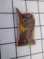 716c Pin's Pins / Beau Et Rare / THEME : VILLES / CHAMPS DE REVES ET D'HISTOIRE - Villes
