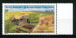 TAAF 2006 N° 438 ** Neuf MNH Superbe C 2,00 € Jardin Sur L'île D' Amsterdam Flore - Terre Australi E Antartiche Francesi (TAAF)