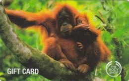 Gift Card - - - UK - - - Monkey - Gift Cards