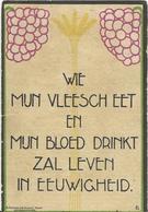 DP. EMIEL VERMEESCH ° HOUTHEM (VEURNE) 1862- + LICHTERVELDE 1937 - BURGEMEESTER DER GEMEENTE - Godsdienst & Esoterisme