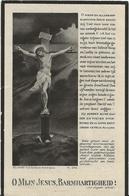 DP. DESIRE PATTYN ° STADEN 1862- + BRUGGE 1930 - NOTARIS, BURGEMEESTER, BIJGEVOEGDE VREDERECHTER - Godsdienst & Esoterisme