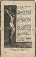 DP. JEROME PIL ° WOESTEN 1876- + STAVELE 1937 - BURGEMEESTER VAN STAVELE - Godsdienst & Esoterisme